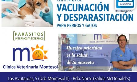CLINICA VETERINARIA CACERES MONTESOL - LA MEJOSTILLA