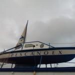 Distribuidor de mariscos y pescados Pescanoex