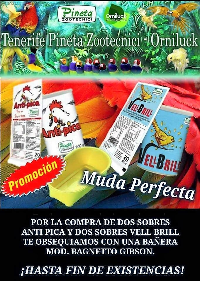 Tienda De Animales En AlmendralejoDestino ,Piensos Acuorofilia