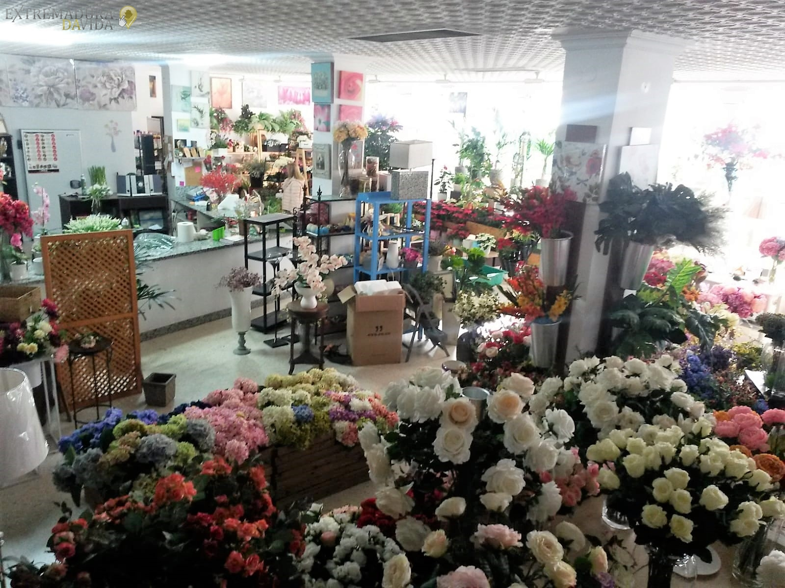 Floristeria en Almendralejo Decoración Lis