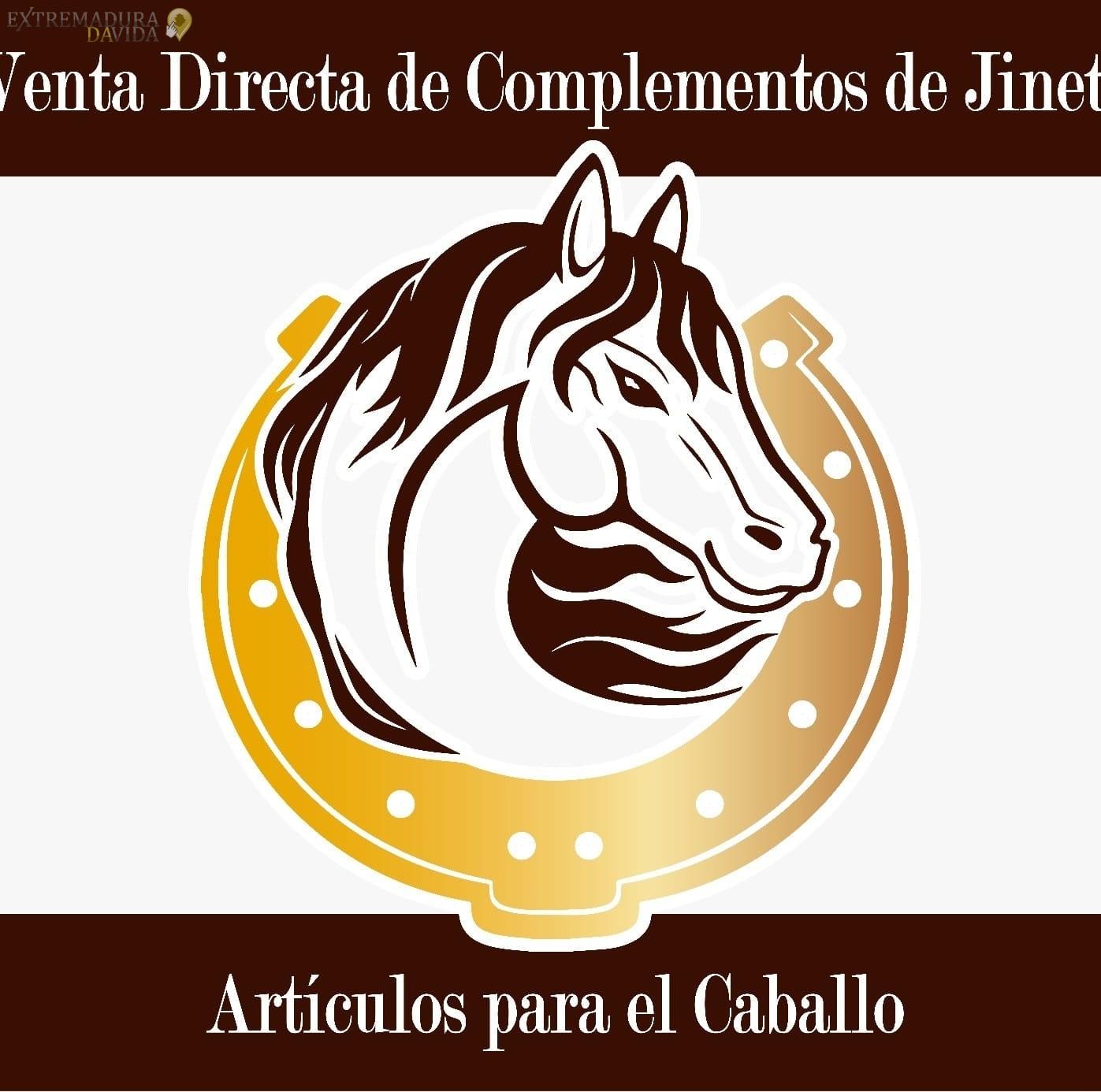Tapicería del automovil y hogar Talayuela Extremadura