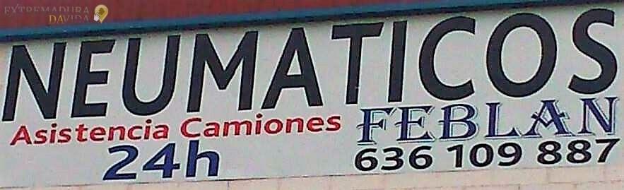 NEUMATICOS EN MONESTERIO FEBLAN