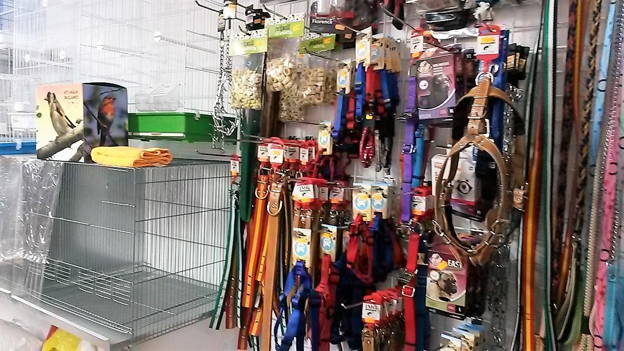 tienda de animales Cáceres Todo+cotas
