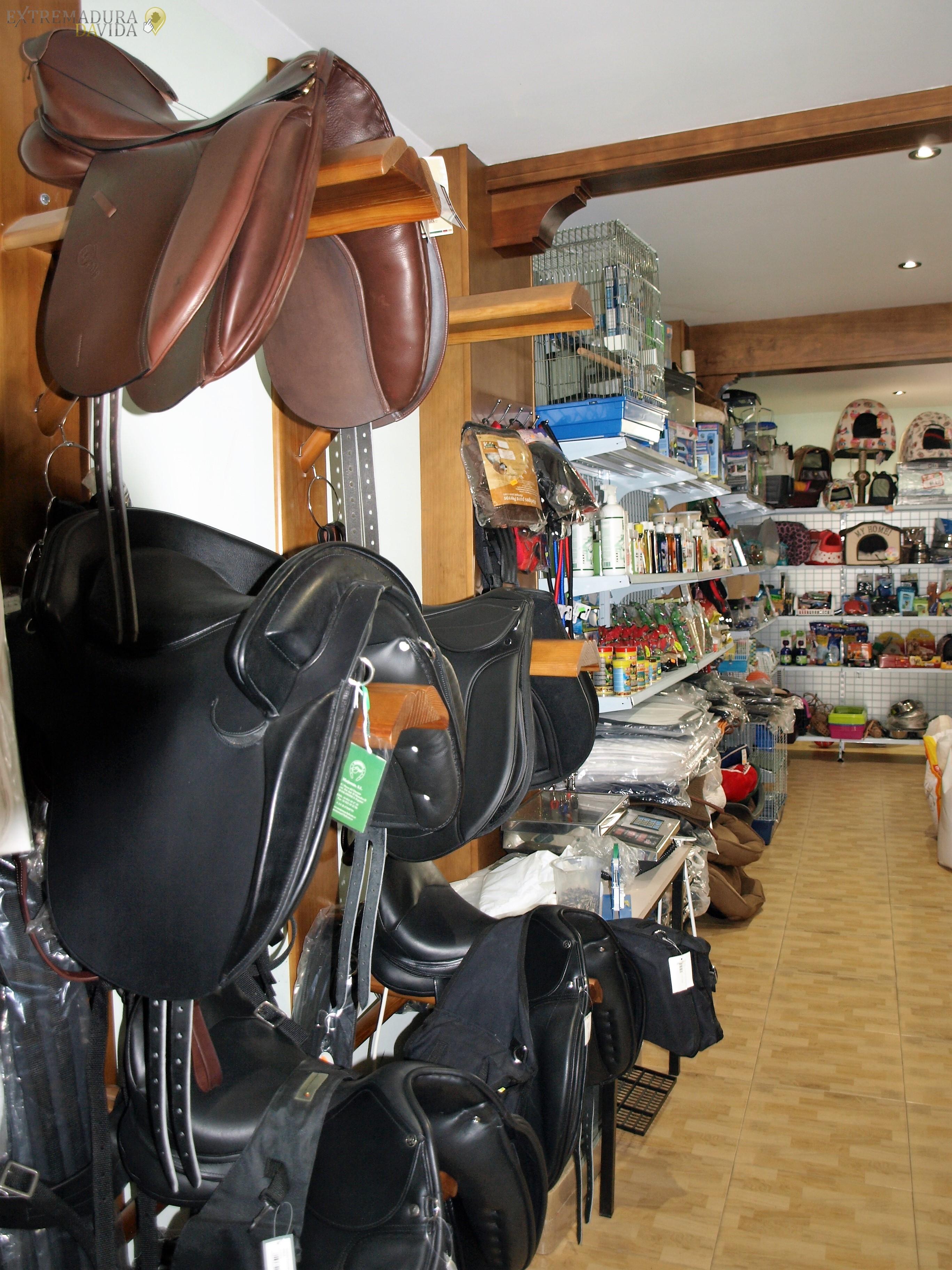 tienda de equitacion caceres mi aficion – arroyo de la luz