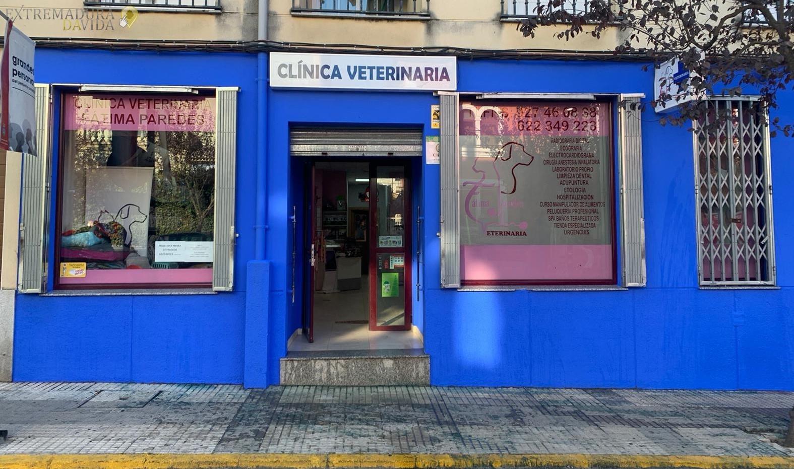 Clinica veterinararía en la Vera Fatima Paredes Jaraiz
