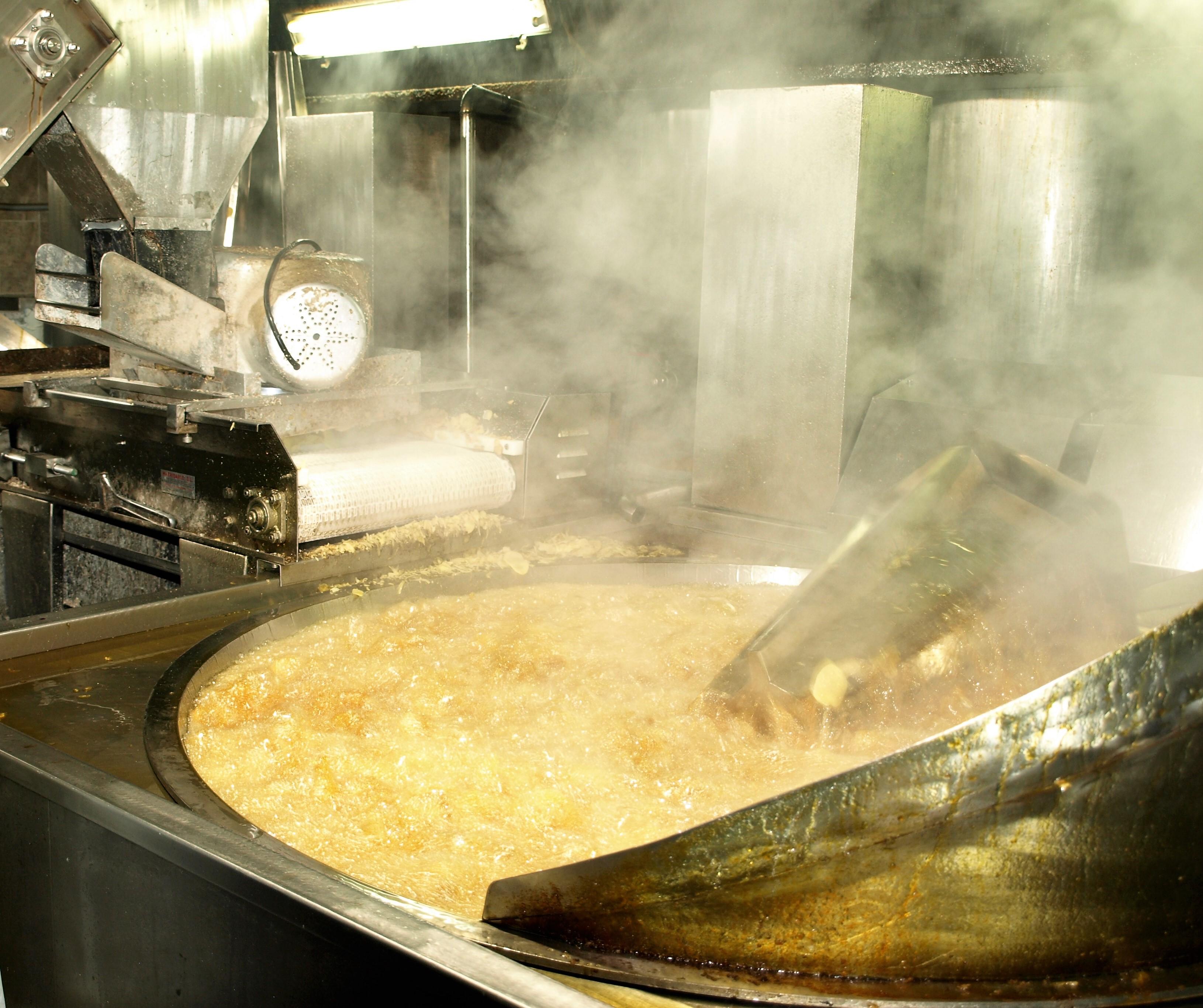 Fabrica Patatas fritas Extremadura El Gallo
