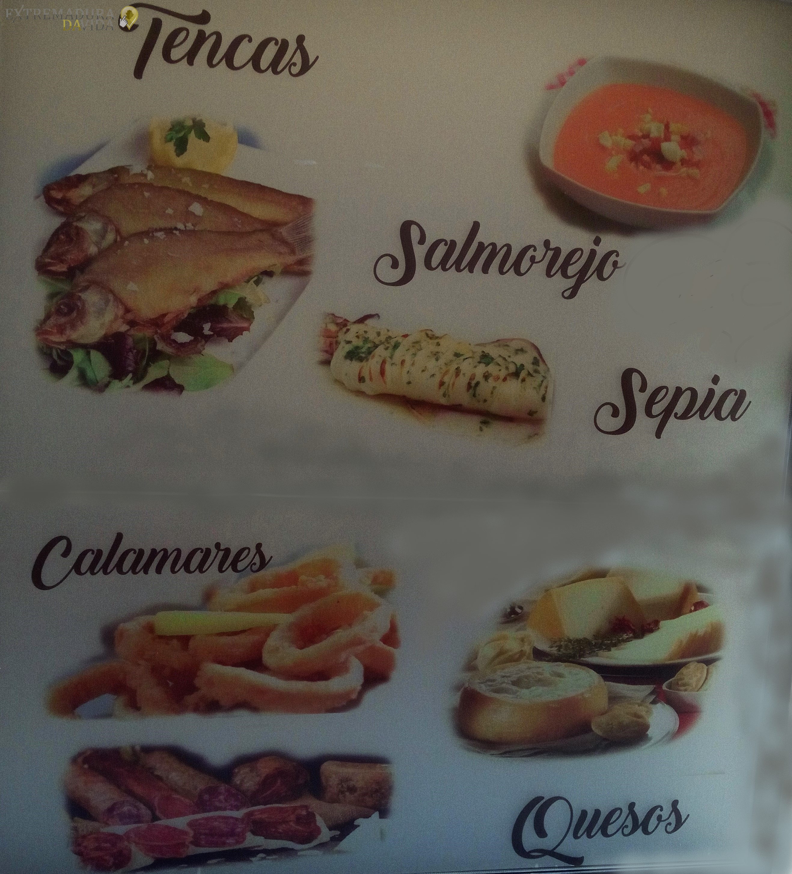 Tencas ancas de rana en Cáceres Restaurante la Fusa