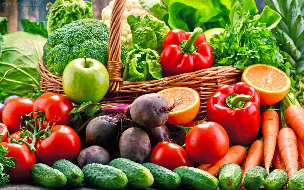 Almacén Distribuidor de Frutas y Verduras Navalmoral de la Mata Atalaya Talayuela