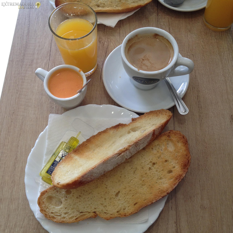 Café Bar Raciones Hinojal Hogar Pensionista Santo Toribio