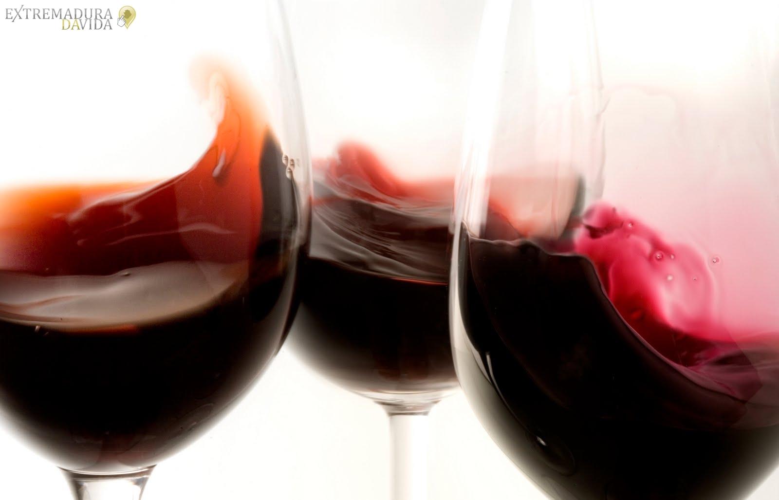 Vinoteca pruductos gourmet Navalmoral de la Mata Francisney Uribe (9)
