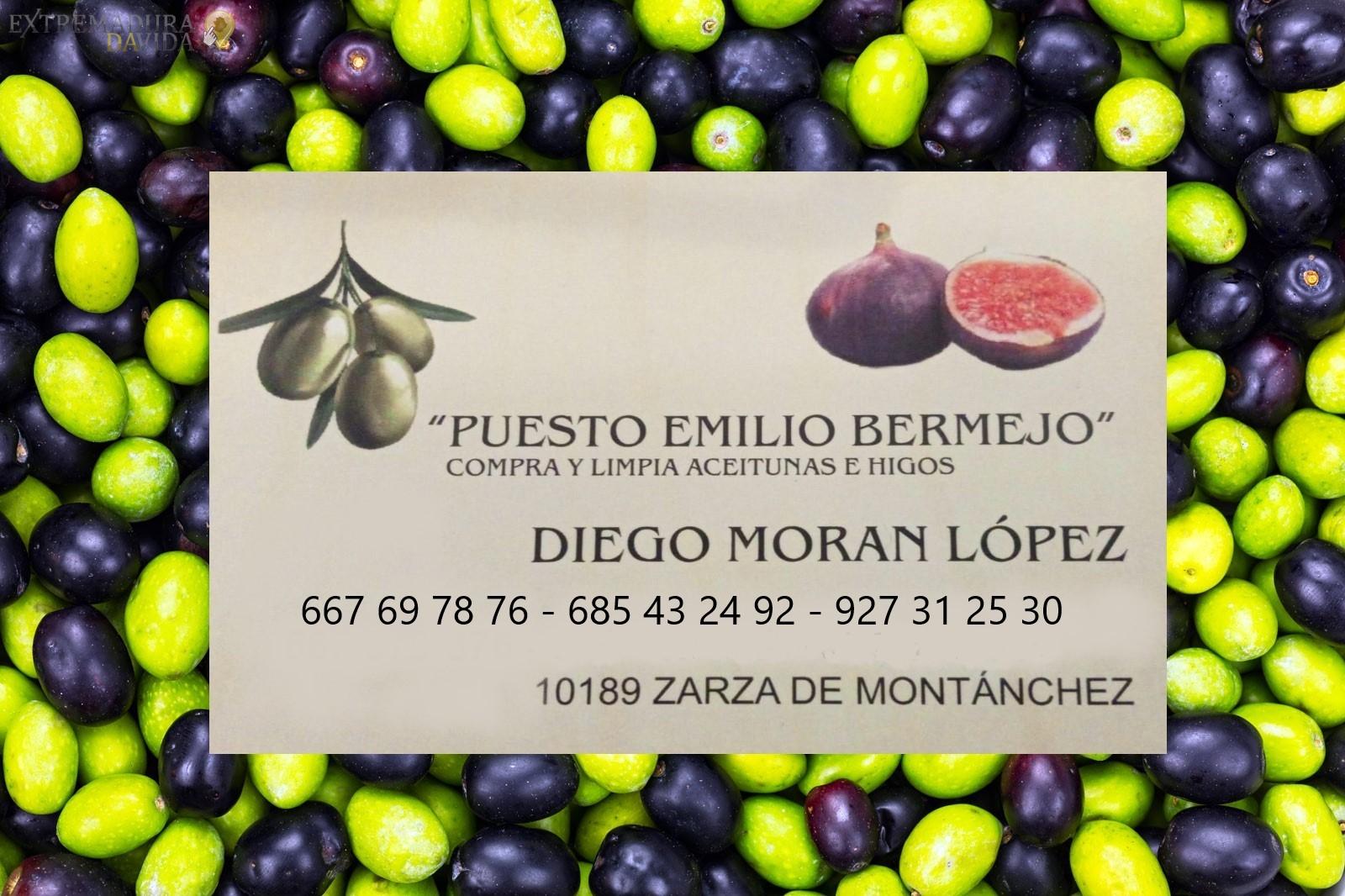 Compra de aceitunas Cáceres Puesto Emilio Bermejo Zarza de Montanchez